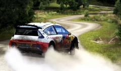 Rally Loeb